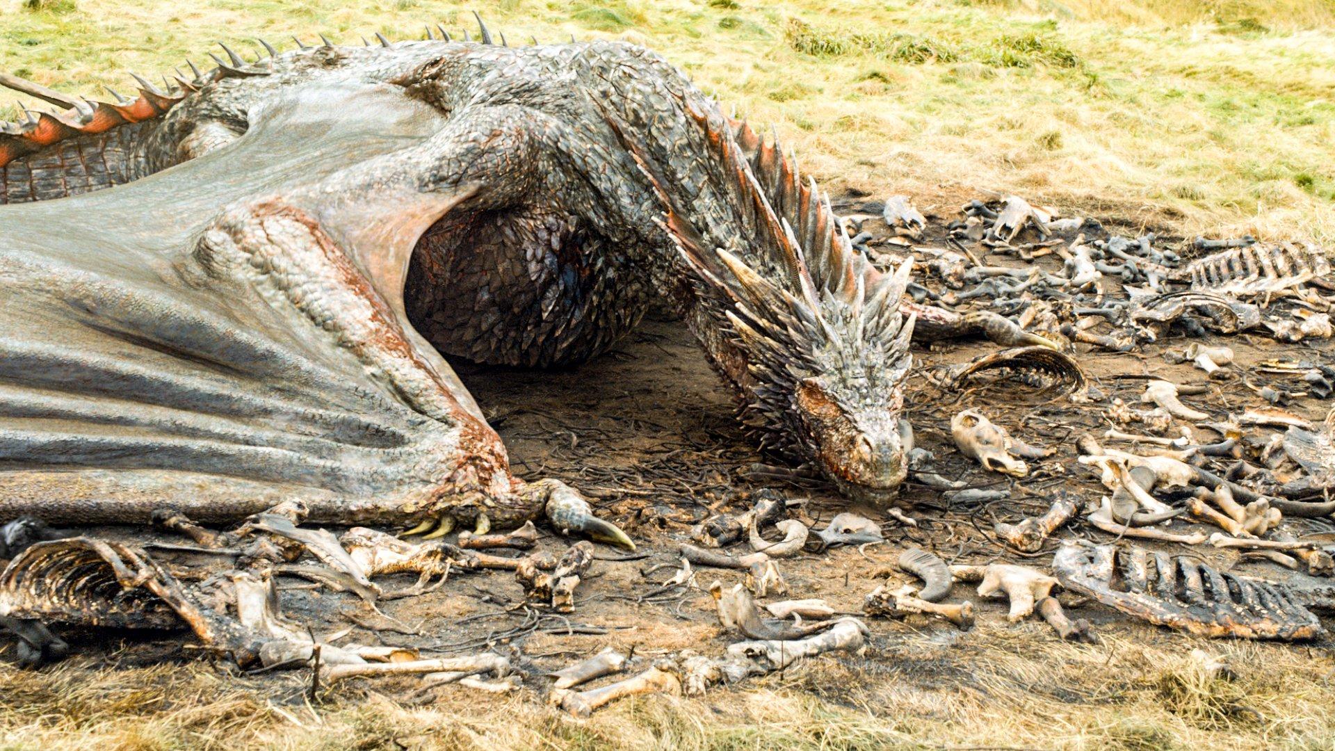 Рацион дракона